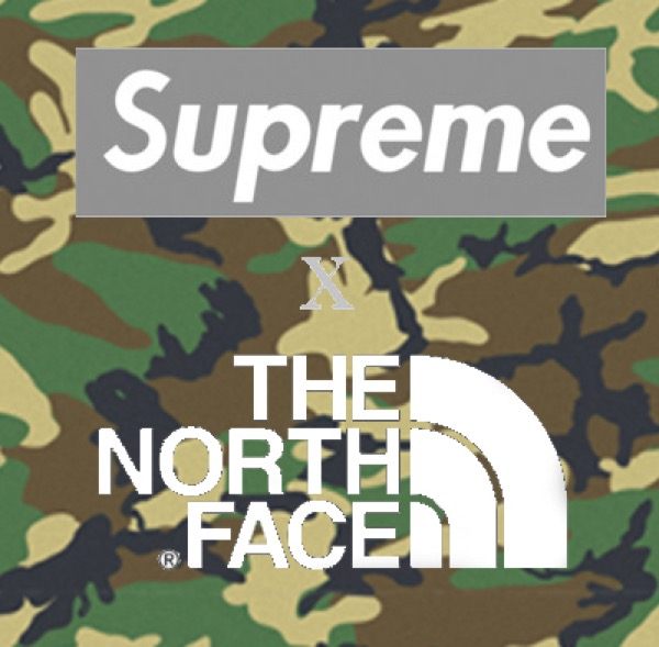 supreme_the_north-face